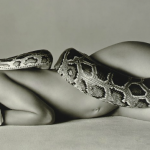 Nastassja Kinski and the Serpent